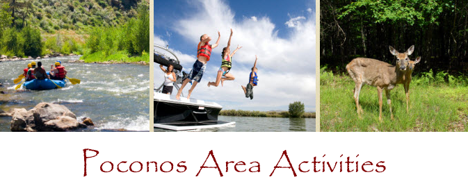 Area Activities/Attractions
